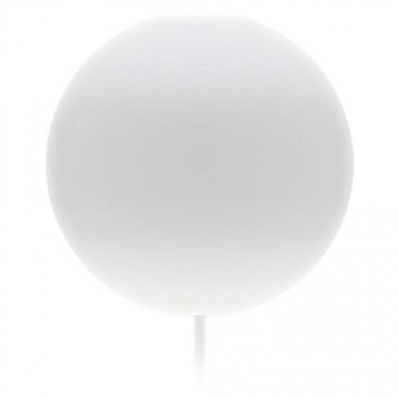 Cannonball wit - Vita