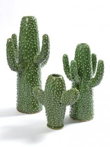Cactus Vaas - Serax
